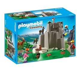 Alpinisti Si Animale Montane